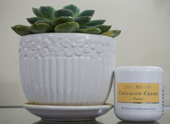 Collagen Cream Forte